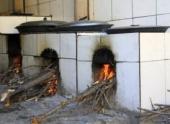Кухонные печи в Индии разрушительно влияют на экологию