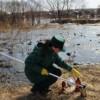 Минэкологии РТ нашло виновников сброса сточных вод в Казанку