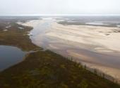Замор зафиксирован на нерестовой реке Щучья в Тазовском районе