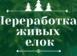 Утилизация и переработка елок: опыт Запорожья и Европы