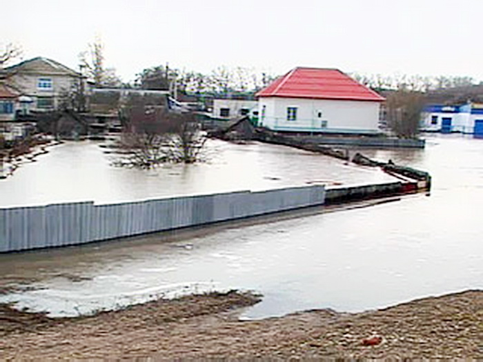 Погода с с.половинка советский район алтайский край