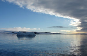 arktika